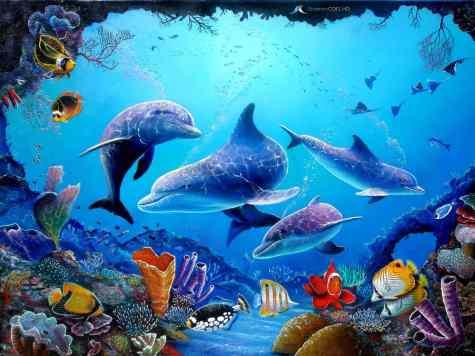 kartandtinki1_dolphin-wallpaper_01