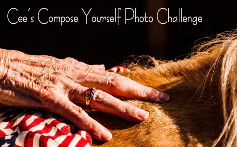 banner-compose-yourself-challenge