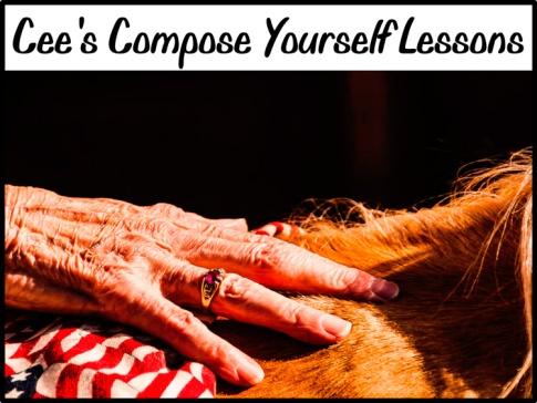 Cee's-Compose-lesson
