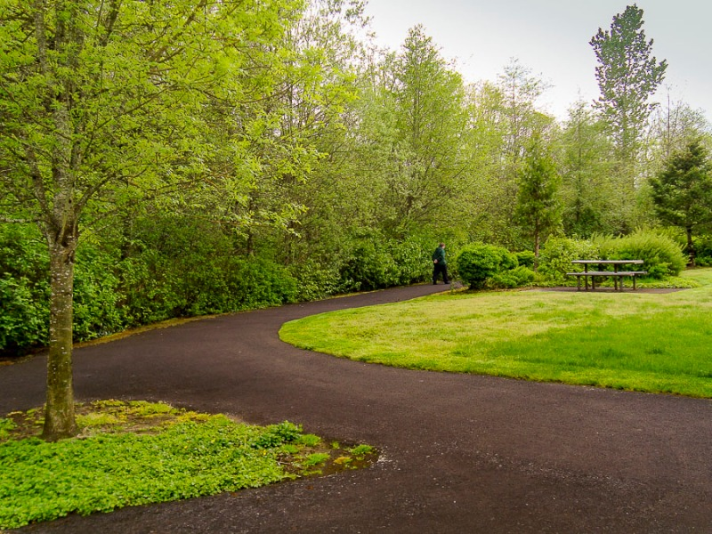 Curved path in local park.