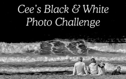 Badge for Cee's black and white photo challenge