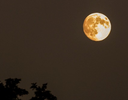 How's this moon photo I took for a classic example? The moon is on the dot in the upper right.