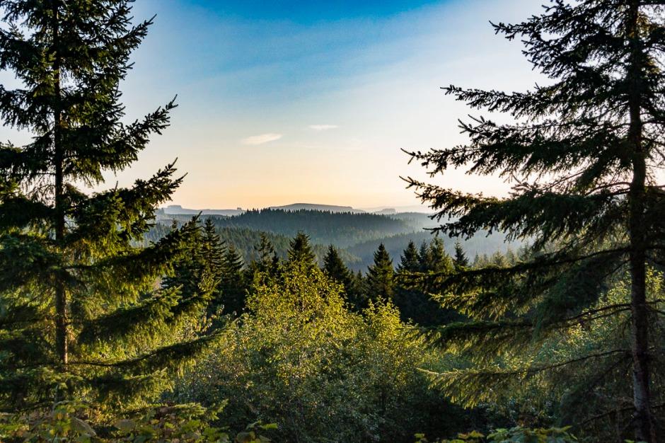 View of Coastal Range Mountains in Oregon.