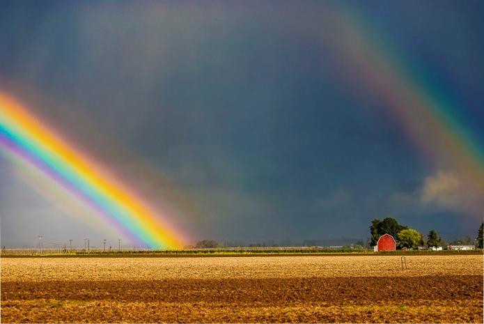 Rainbows make me smile.