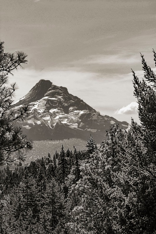 Mt Hood, Oregon (11,239' Oregon's tallest mountain)