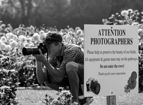 Photographer and sign