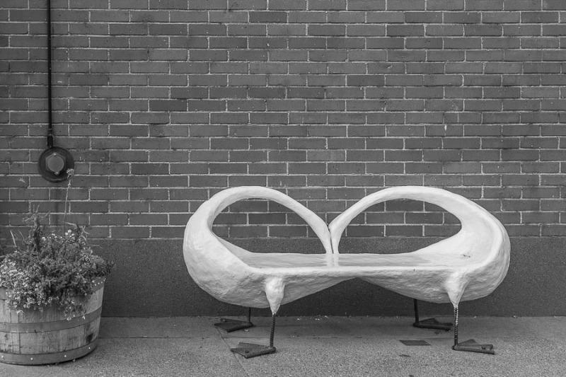 Swan bench, Idaho Falls, Idaho.
