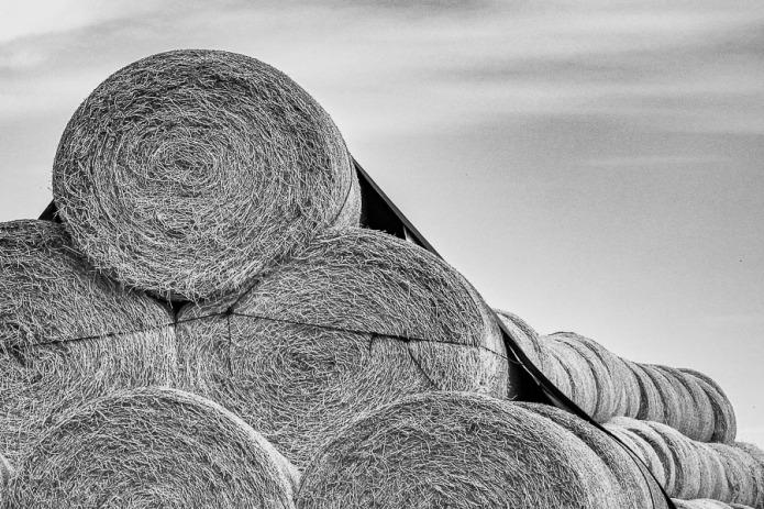 Haystacks in Idaho.
