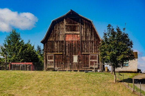 Barn near Canby, Oregon.