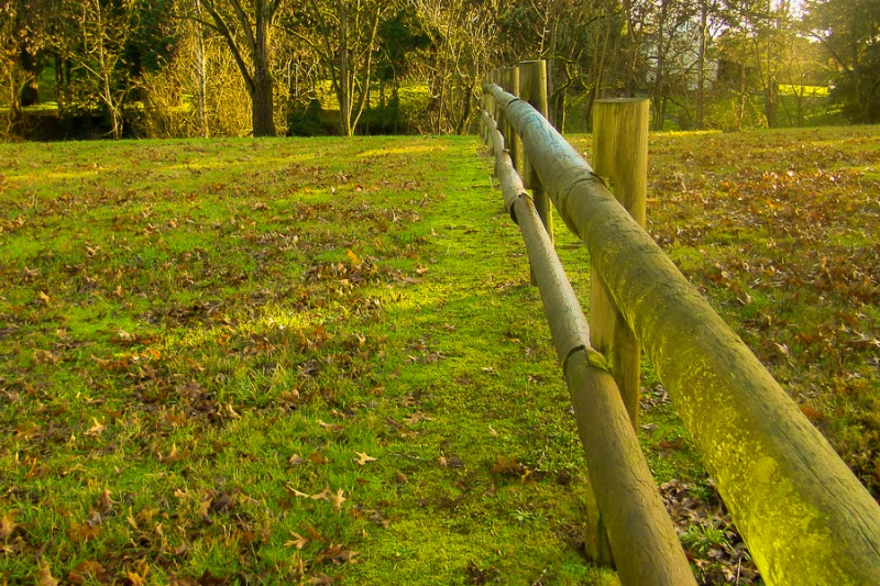 Wooden post fence in Molalla River State Park, Canby, Oregon.
