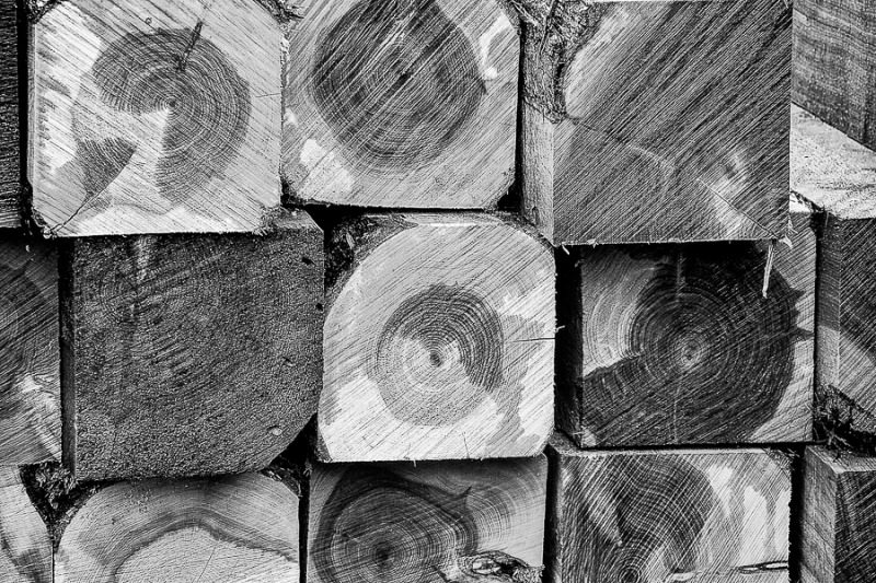 4x4 fence posts that are square and have the tree ring (circles) shown in the center.