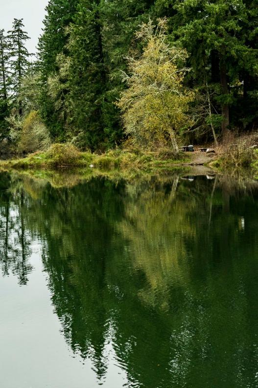 Milo McIver State Park, Estacada, Oregon.