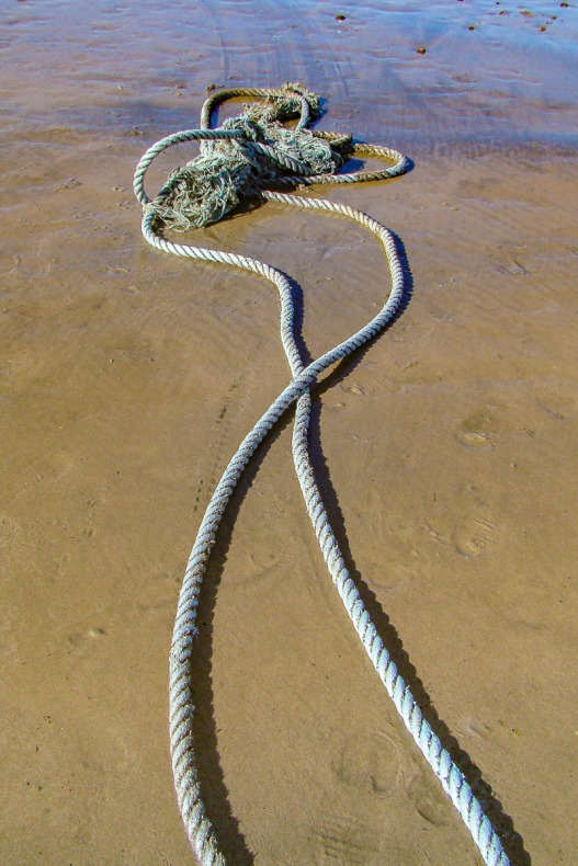 Rope found at the beach.