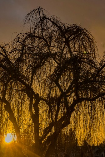 122416christmas-eve-sunset