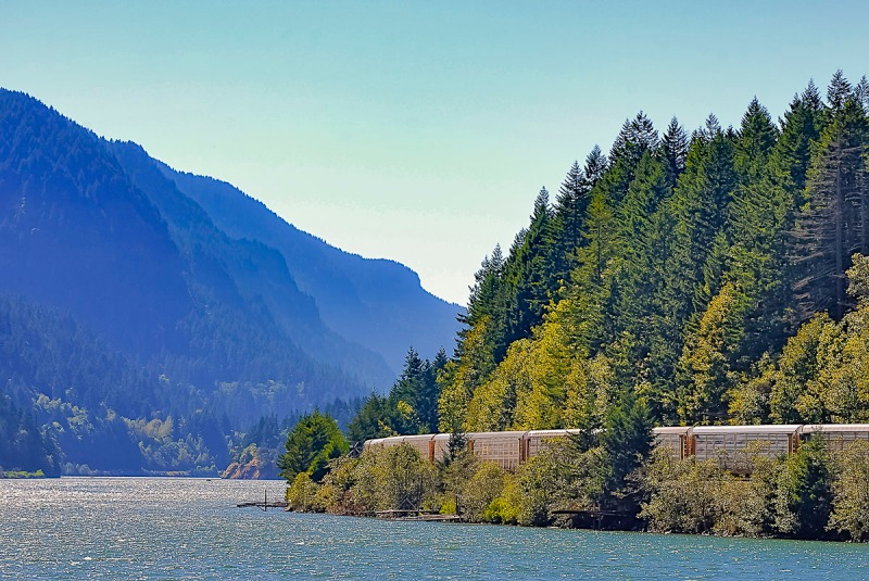 Train dwarfed by Douglas Fir Trees, Columbia River and Mountains.