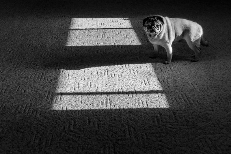 Shadow inside a room.