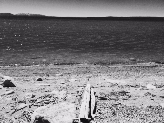 Shore of Lake Yellowstone.