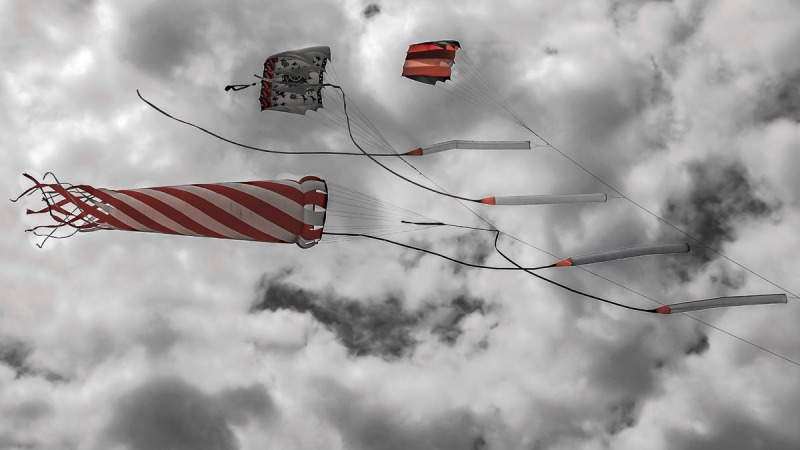 Kites in the sky.