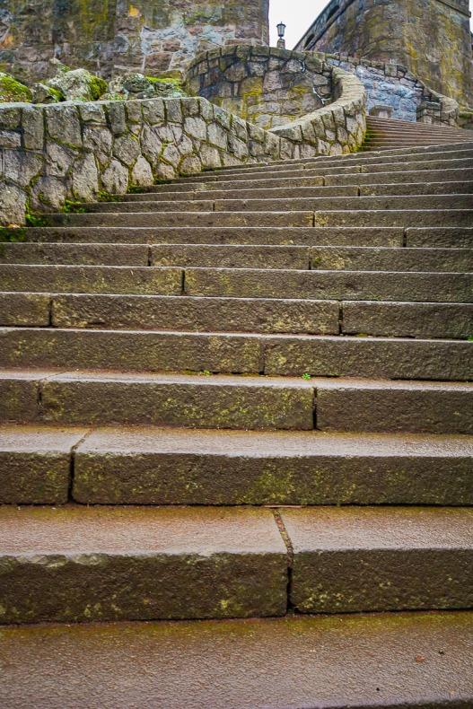 Steps leading up to Joseph Hill Park, Portland, Oregon.