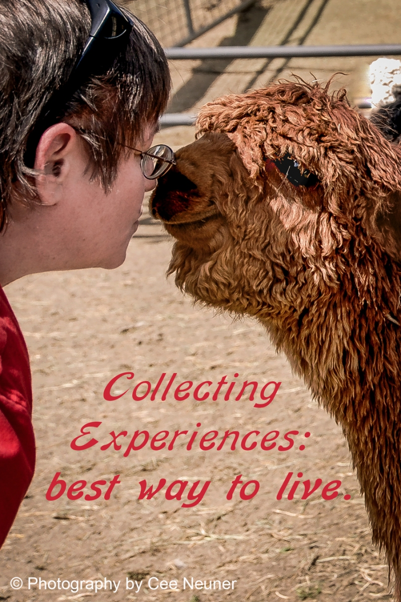 Six Word Saturday - Collecting Experiences:  best way to live