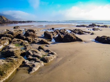 Low Tide. Photo taken while standing down on the beach beyond the grassy area.