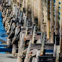 A Photo a Week Challenge: Vanishing Point