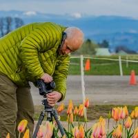 FOTD - January 22, 2019 - Tulips and Multi-tasker