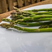 March 21 - #SpikySquares Asparagus and Azaleas