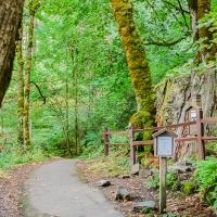 Tuesday Photo Challenge - Trail