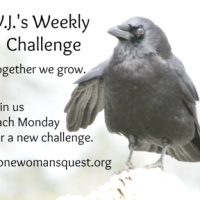 V.J.'s Weekly Challenge #57: Presence