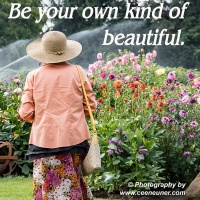 Six Word Saturday - Be your own ....