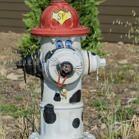Cee's Fun Foto Challenge:  Fire hydrants