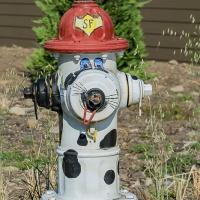 Cee's Fun Foto Challenge:  Fire hydrants