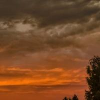 Color Your World: Burnt Orange