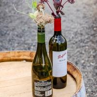 Weekly Prompt's Challenge - Bottles