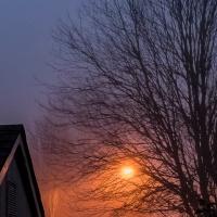 Tuesday Photo Challenge - Glow