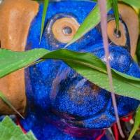 Cee's Fun Foto Challenge: Vibrant Colors