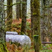 LPM's Photo Adventure challenge - Rural Life