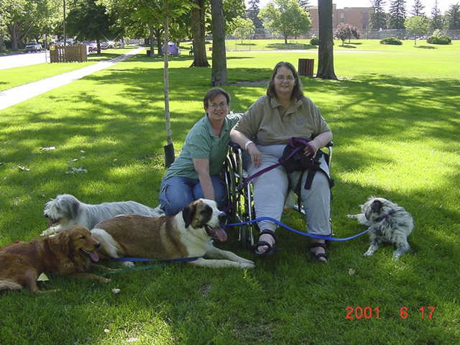020420hospital dogs.jpg