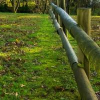 Cee's Fun Foto Challenge: Vanishing or Leading Lines