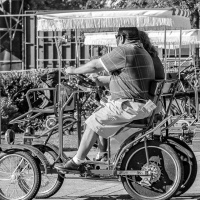 Cee's Black & White Photo Challenge:  Bicycles, Tricycles, Motorcycles, Unicycles