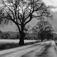 Cee's Black & White Photo Challenge:  Roads