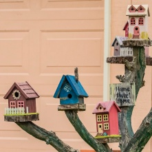 Bird houses I photographed in a yard.