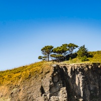 April 7 - #SquareTops - Trees on top of a Huge Rock