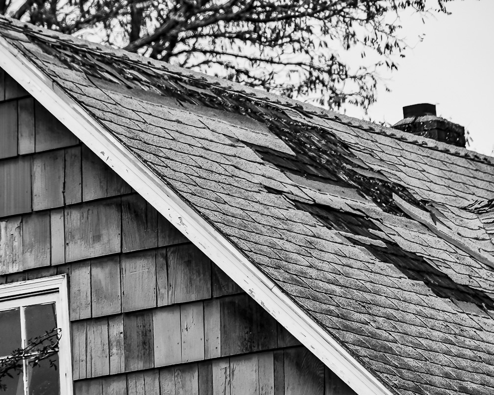 Cee's Black & White Photo Challenge: Decayed or Rusty