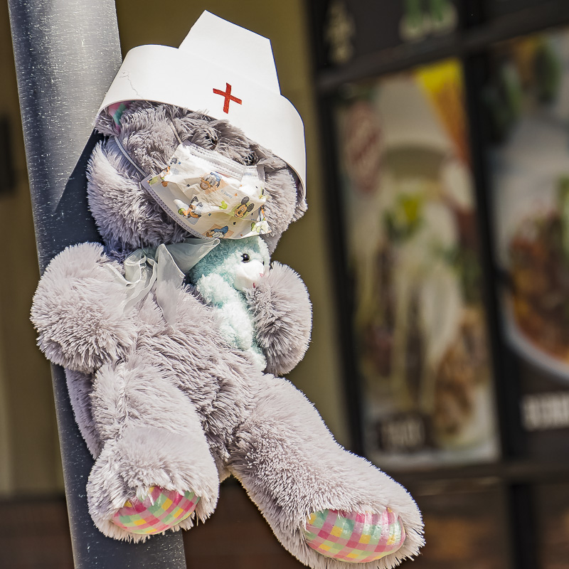 Kammie's Oddball Challenge – Canby Businesses and Teddy Bear Hunt