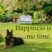 Pick Me Up - May 29 - Happiness is ...