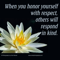 Pick Me Up:  When you honor yourself ...