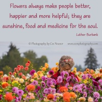 Pick Me Up:  Flowers always make people better ...
