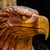 July 13 - SquarePerspectives  -  Carved Eagle